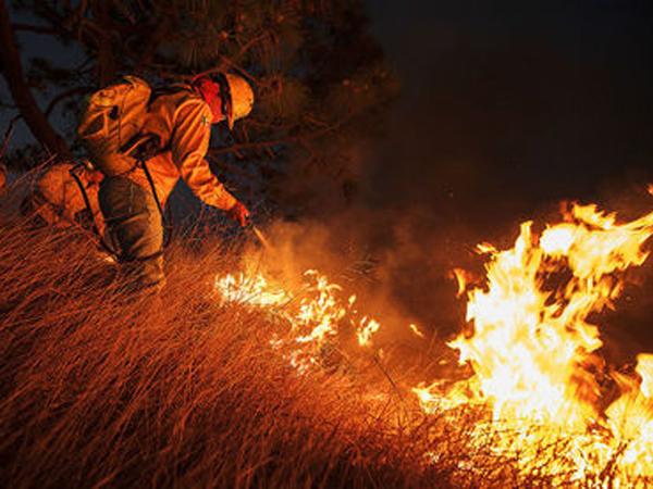 CombatesIncendiosForestales10