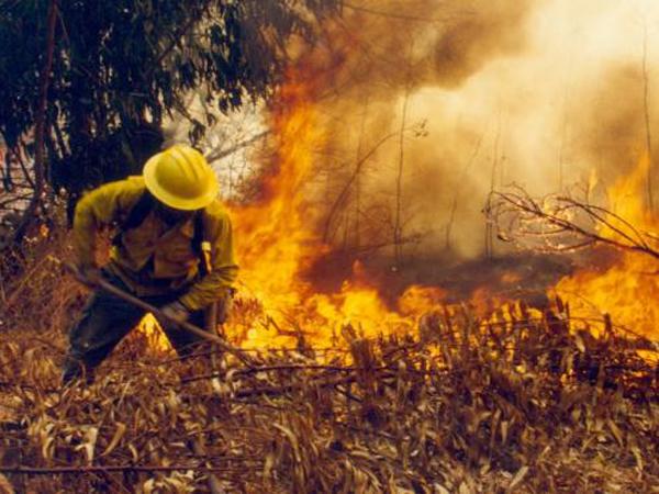 CombatesIncendiosForestales11