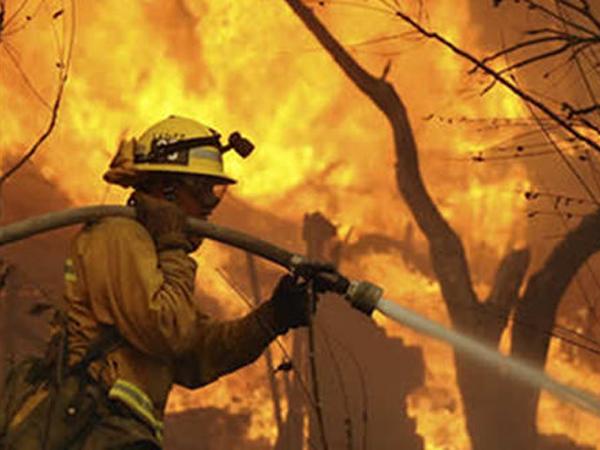 CombatesIncendiosForestales13