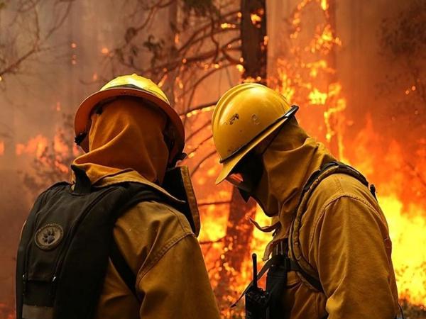 CombatesIncendiosForestales14
