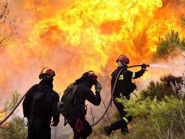 CombatesIncendiosForestales2