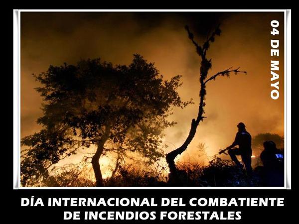 CombatesIncendiosForestales5