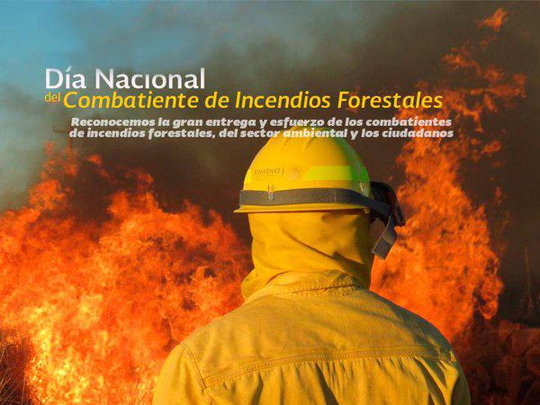 CombatesIncendiosForestales8