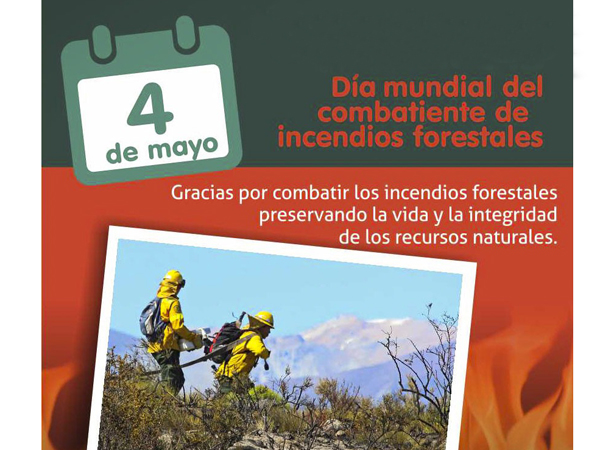 CombatesIncendiosForestales9