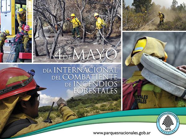 Día Internacional del Combatiente de Incendios Forestales 22