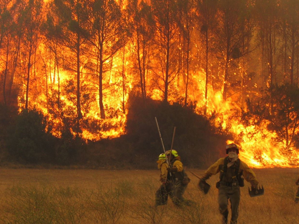 IncendiosForestales18