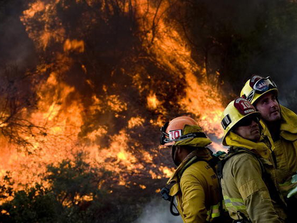IncendiosForestales19