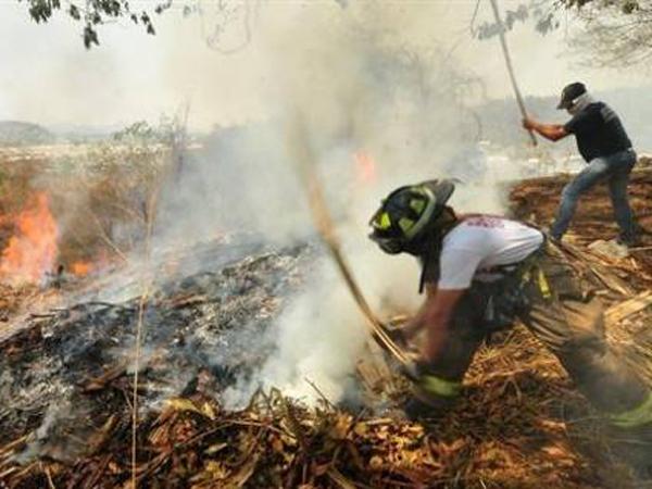 IncendiosForestales20