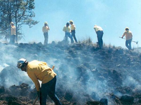 IncendiosForestales23