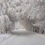 Paisajes de invierno para Portada de Facebook o Fondo de WhatsApp