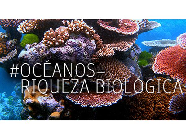 DiaDeLosOceanos14