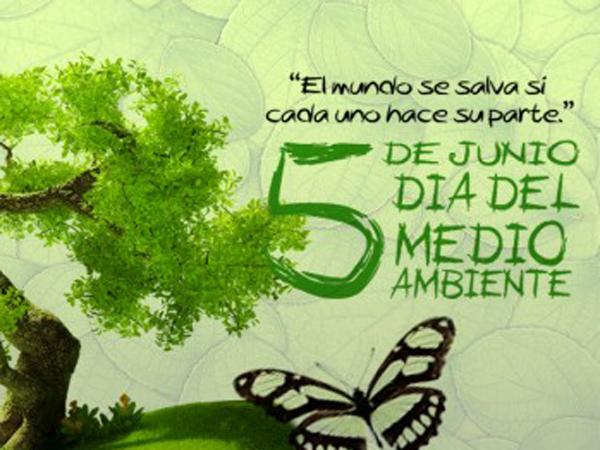 DiaDelMedioAmbiente26