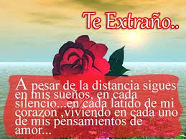 TeExtraNo3
