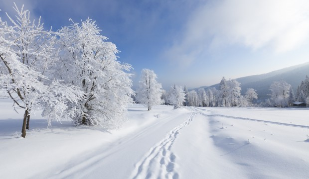 imagenes-de-invierno-5