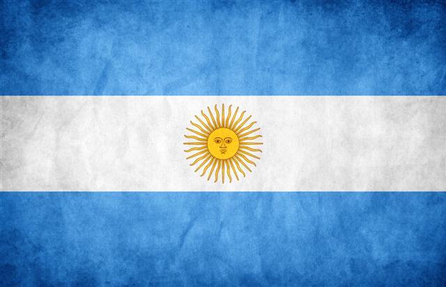 BANDERA ARGENTINA (Small)
