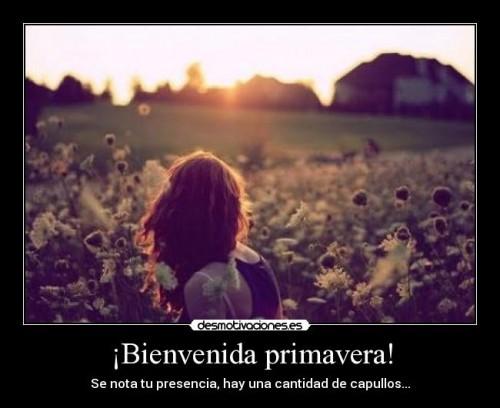 BienvenidaPrimavera11