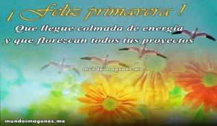 BienvenidaPrimavera19
