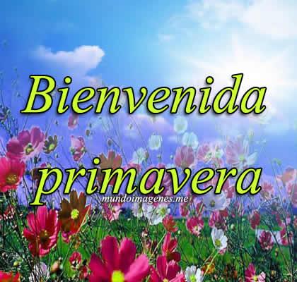 BienvenidaPrimavera4