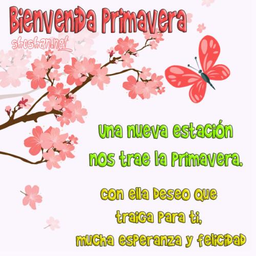 BienvenidaPrimavera5