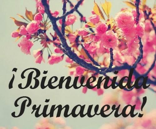 BienvenidaPrimavera7