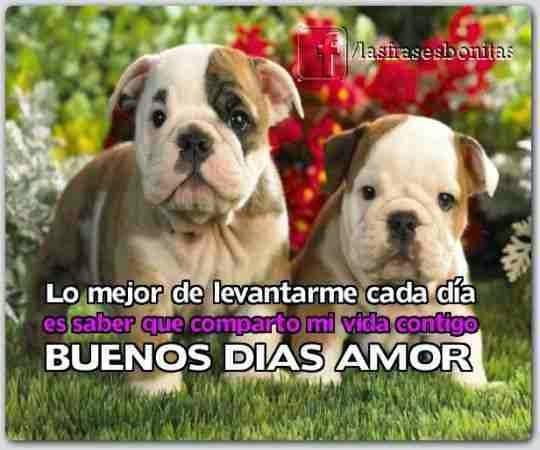 ImagenesDeBuenosDias15
