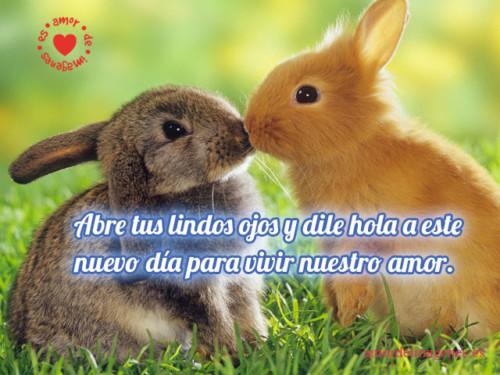 ImagenesDeBuenosDias37