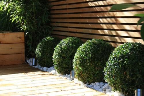 camino-jardin-setos-bolas