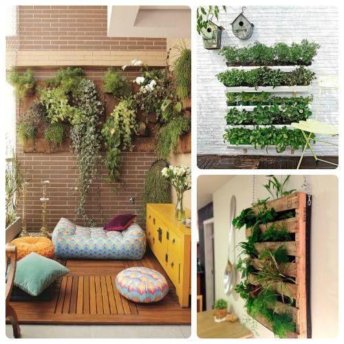 Im genes y decoracion de jardines peque os y verticales for Ideas para jardines pequenos interiores