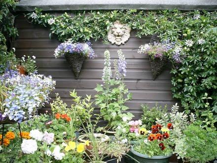 fotos-de-jardines-hermosos1