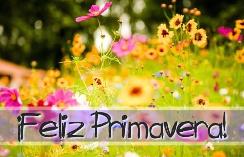 bienvenidaprimavera8
