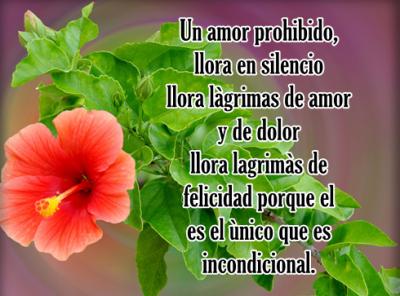 reflexionesdeamor33