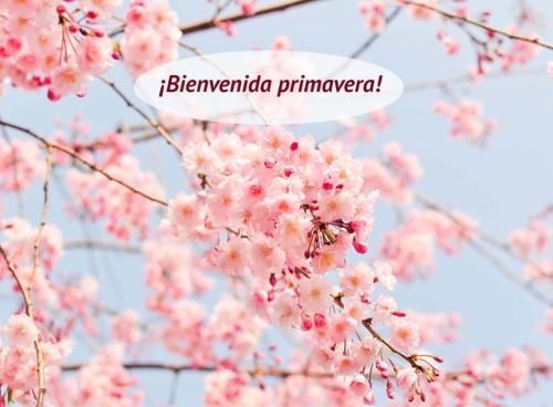 bienvenida-primavera (1)