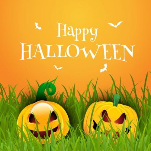 fondo-del-feliz-halloween-con-calabazas_1048-3030