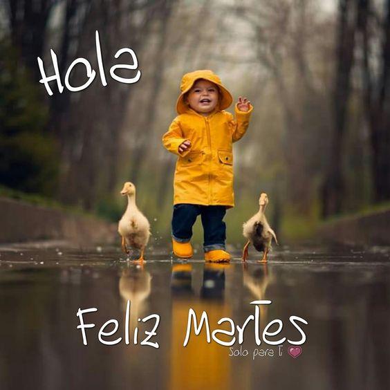 felizmartes9