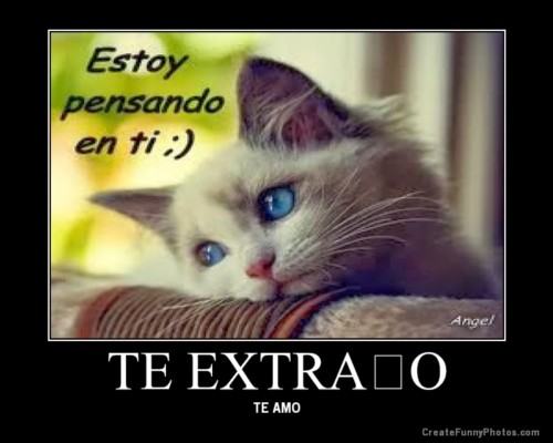 teextrano11