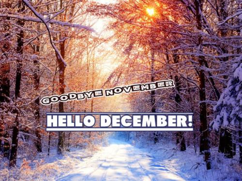 bye-november-hello-december