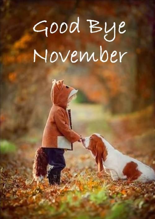 good-bye-november