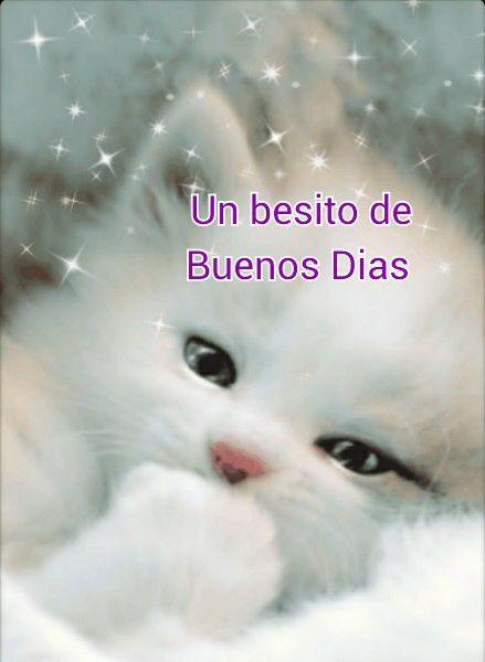 Frases de Buenos Dias en imágenes con mensajes tiernos