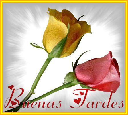 Imagenes Con Frases De Buenas Tardes Romanticas