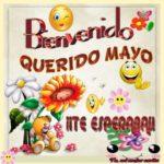 Frases cortas en imágenes para dar la Bienvenida al mes de Mayo