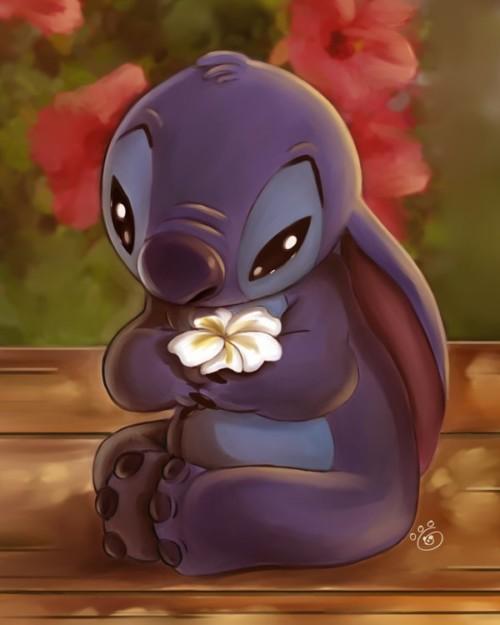 40 Mejores Imágenes De Stitch Super Tiernas